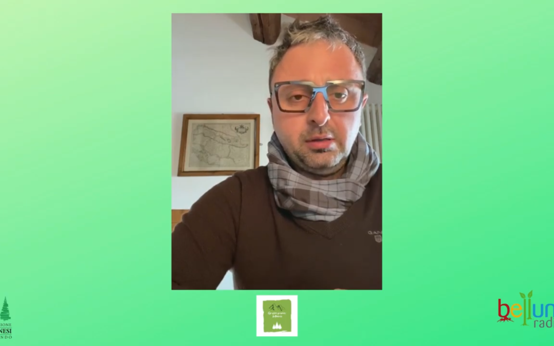 Bellunoradici.net: il giro del mondo in 12 mesi. I consigli di Manuel Polin